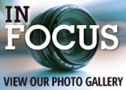in focus photo gallery