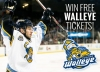 Win Free Walleye Tickets thumbnail image
